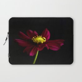 Elegance of a Cosmo Laptop Sleeve