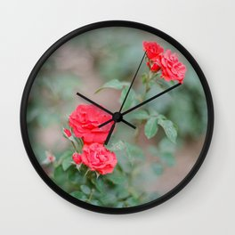 Church of Saint Anne's Gardens Blooms / Holy Land Fine Art Film Photography Wall Clock