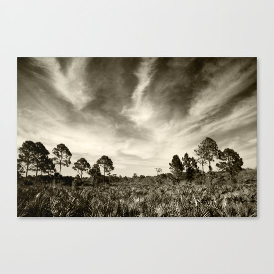 The real Florida  Canvas Print