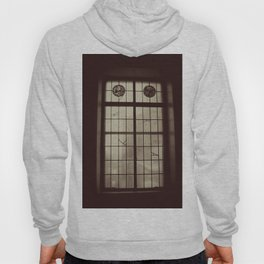 Window Glass Chicago Original Photo Hoody