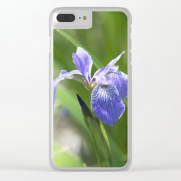 Longwood Gardens - Spring Series 234 Clear iPhone Case