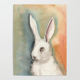 Portrait of a White Rabbit Poster