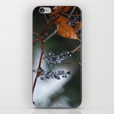 Grapes in a Morning Rain iPhone & iPod Skin