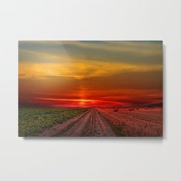 Two roads diverged in a wood, and I—. I took the one less traveled Photographic Metal Print