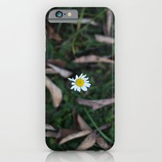 The Lone Flower iPhone 6s Slim Case