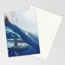 Shark on the Surface Stationery Cards