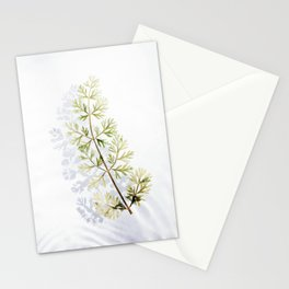 Floating Branch Stationery Cards