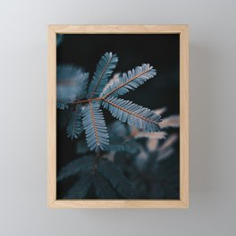 Evergreen Tree Framed Mini Art Print