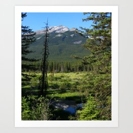 Beautiful Bow Valley Art Print