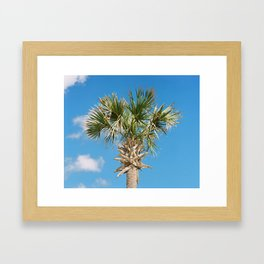 """Happy Palm"" Framed Art Print"