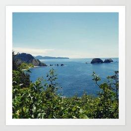 Cape Meares, Oregon, USA Art Print