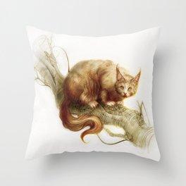 Eichkätzchen Throw Pillow