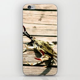 CrabWalk iPhone Skin