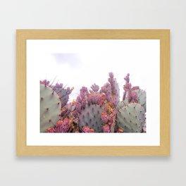 Santa Rita Cactus Framed Art Print