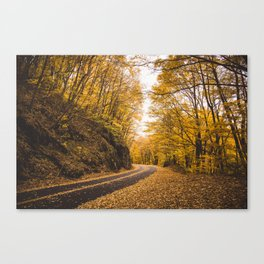 FOLIAGE in the Smoky Mountains of North Carolina Canvas Print