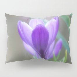 Crocus Venus Pillow Sham