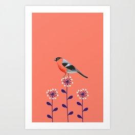 Orange Bullfinch Art Print