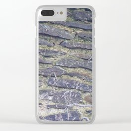 Brick Texture Clear iPhone Case