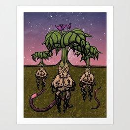 Mandragoran Meditation Art Print