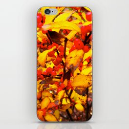 Red and Yellow iPhone Skin