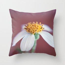 small white daisy 1 Throw Pillow
