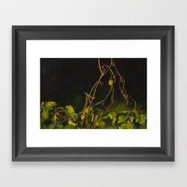 Autumn Greens Framed Art Print
