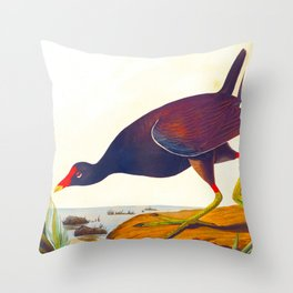 Common Gallinule Bird Throw Pillow