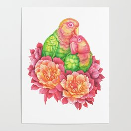 Lovebirds and Cactus Flowers Poster