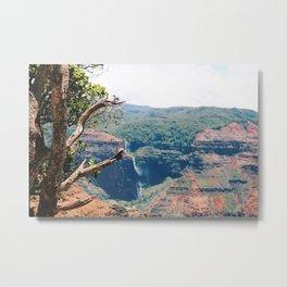 Canyon Waterfall 2 Metal Print