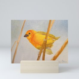 Saffron Finch Mini Art Print