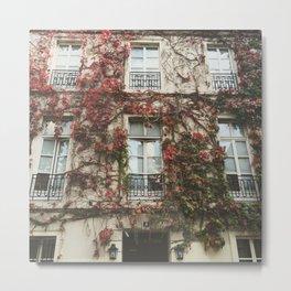 Fall Ivy in Paris Metal Print