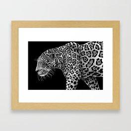 Jaguar 1 Framed Art Print
