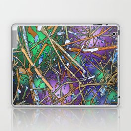 The Twiggs Theory of the Universe Laptop & iPad Skin