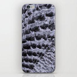 Ice Fields of Antarctica iPhone Skin