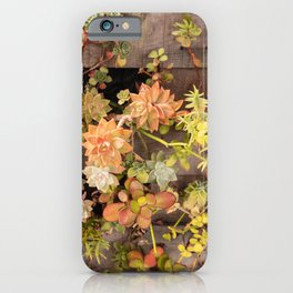 Succulent Wall iPhone Case