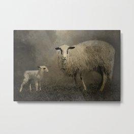 Newborn Lamb Metal Print