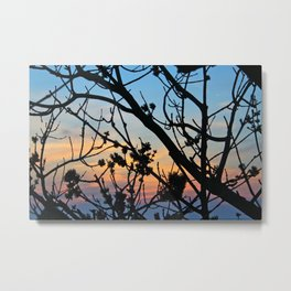 In the Sunset Metal Print