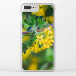 Yellow Blossoms 1 Clear iPhone Case