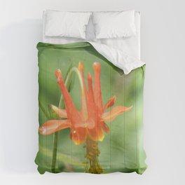 Columbine in the Breeze Comforters