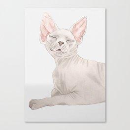 Nude cat Canvas Print
