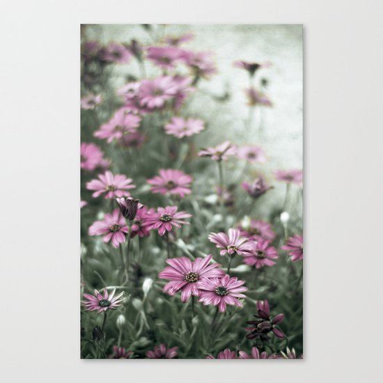 if they don't believe us now Canvas Print