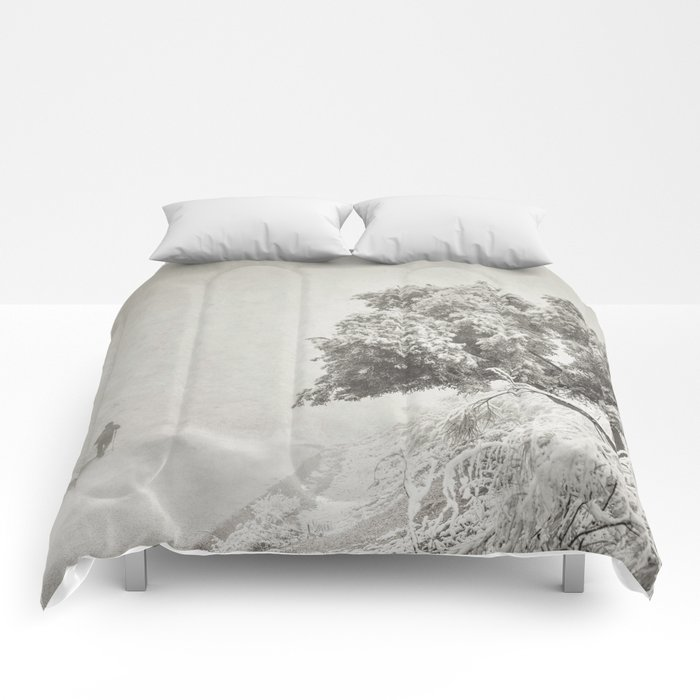 """Wandering into the fog"" Comforters"