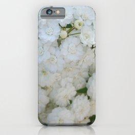 Deutzia Pure and Simple iPhone Case