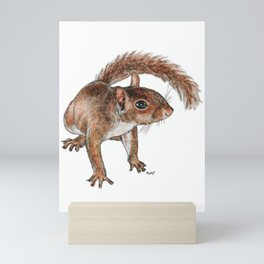 Twitchy-nosed Squirrel Mini Art Print