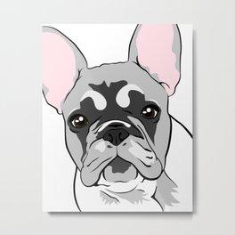 Jersey the French Bulldog Metal Print