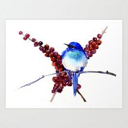 Bird Blue red , Mountain Bluebird adn berries Art Print