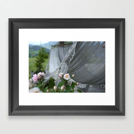 descanso entre rosas Framed Art Print