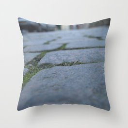 The Road Of Bones Throw Pillow