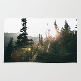 Sunny Forest II Rug