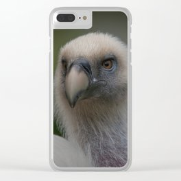 Face Of A Griffon Vulture Clear iPhone Case